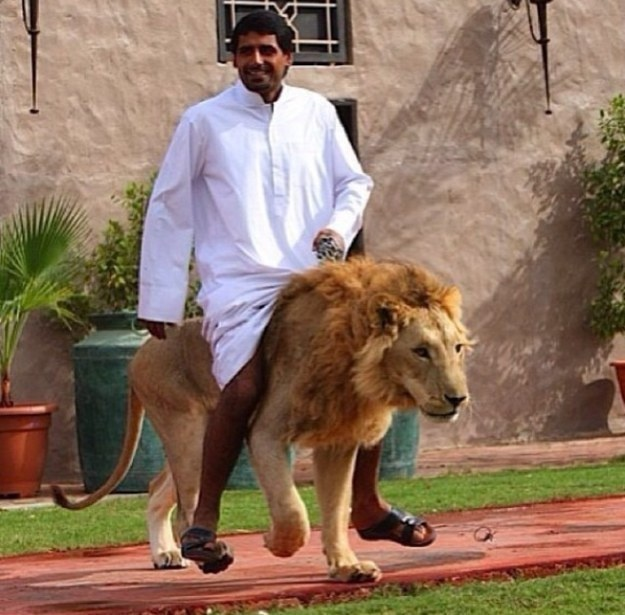 The-man-who-rode-a-lion-Dubai
