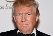 Donald Trump's Victory