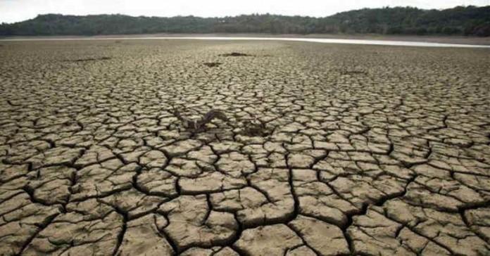 drought field