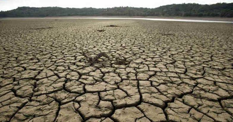 drought field
