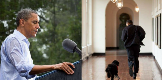 pete souza's favorite photos of obama