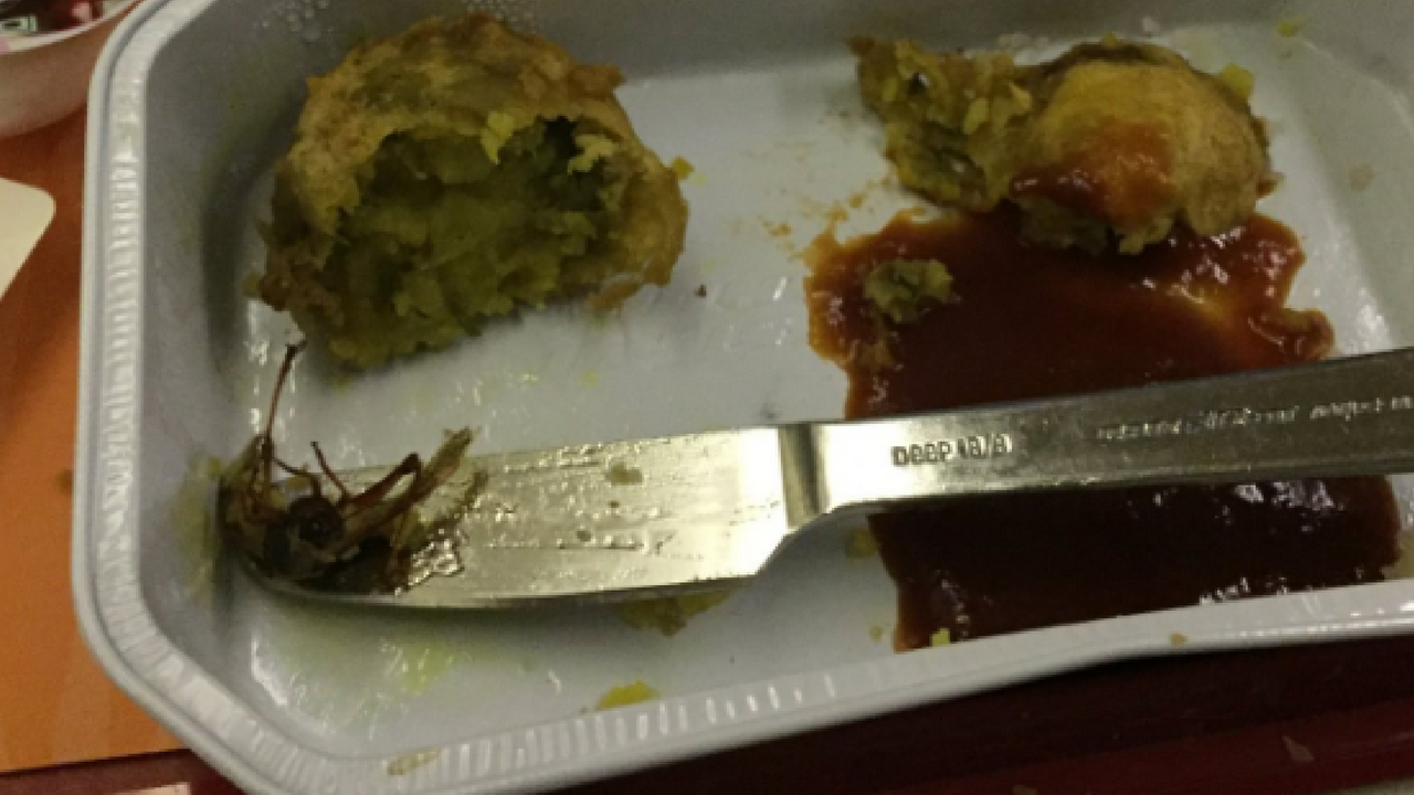 cockroach fry in air india food
