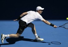 australian open andy murray