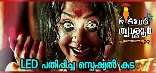 thrissur pooram troll (19)