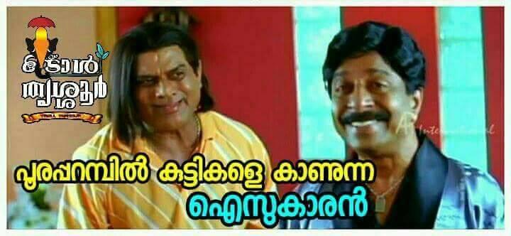 thrissur pooram troll (27)