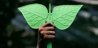 EC Hears Whether Saikala or OPS Gets 'Two Leaves'
