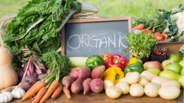 organic agro fest from april 7 to 11