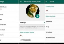 whatsapp text status come back