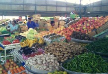 vegetable shop in uae