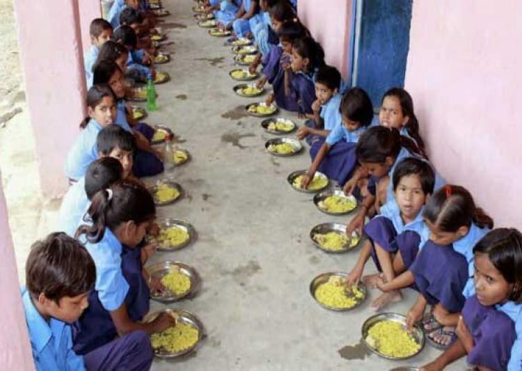 snake found govt school mid day meal