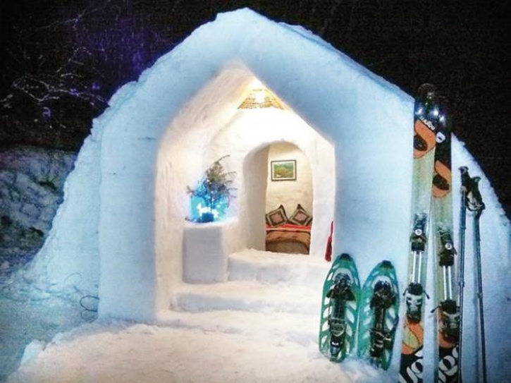 rent stay igloo manali