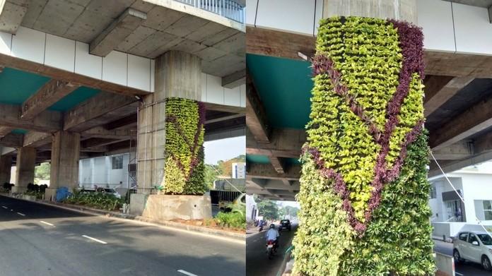 vertical garden, kochi metro pillars