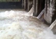 idukki dam shutter open high alert muvattupuzha