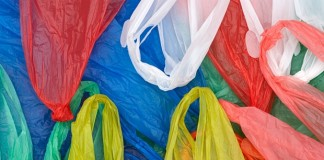 kerala bans plastic carry bags within 6 months