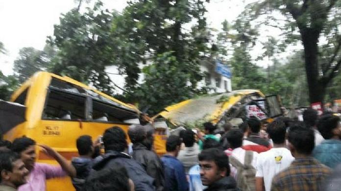 tree fell on school bus