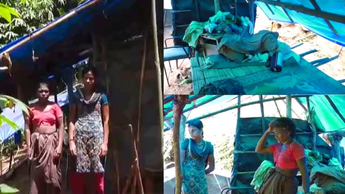 tribals in wayanad