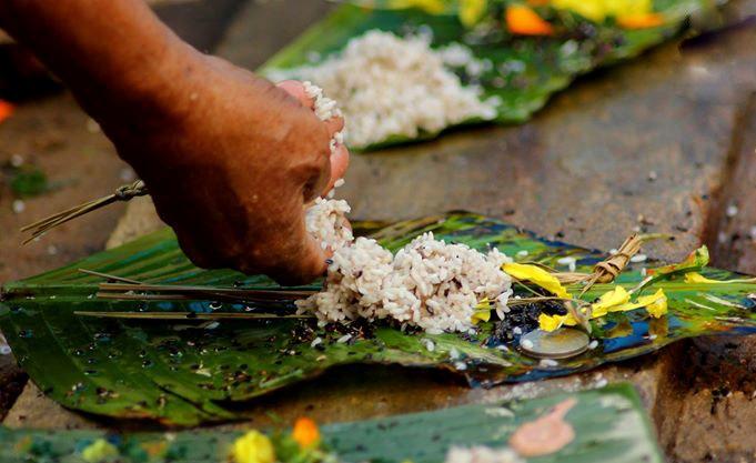 Karkidaka Vavu Bali