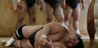 shocking life of sumo wrestlers