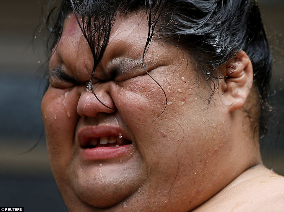 shocking life of sumo wrestlers