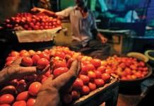 tomato price rises