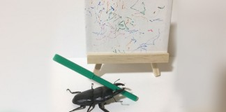 Beetle_painting