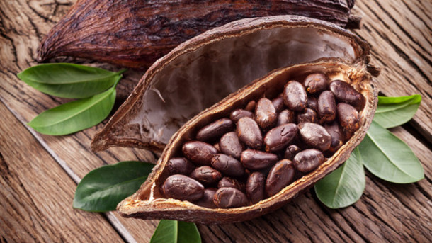 cocoa price falls