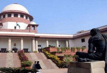 state should take measures to prevent stray dog attack says supreme court privacy is human right says sc