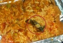 dead lizard in train veg biriyani