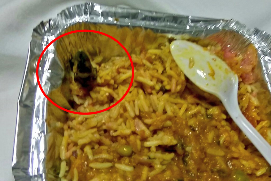 dead lizard in train veg biriyani