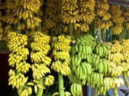 banana price hike