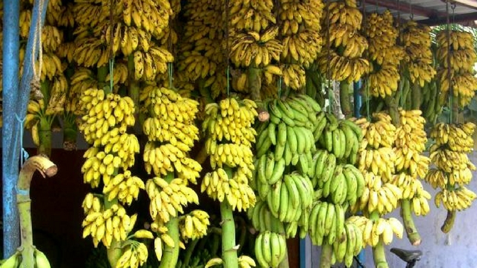 banana price hike onam begins banana price shoot up