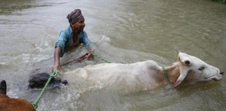 nepal flood death toll touches 100