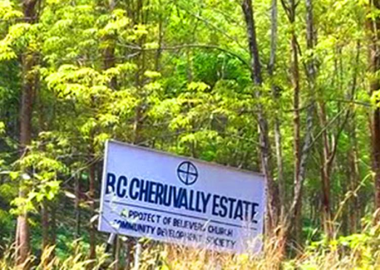 cheruvally estate belong to govt says chief minister
