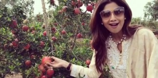 shilpa shetty at pomegranate orchard video