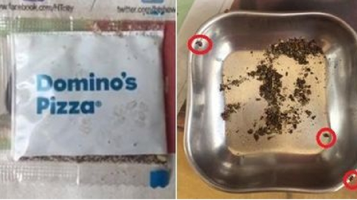 live insects in dominos pizza oregano packet