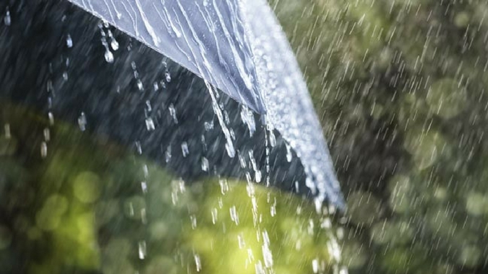 kerala heavy rain holiday declared for educational institutions