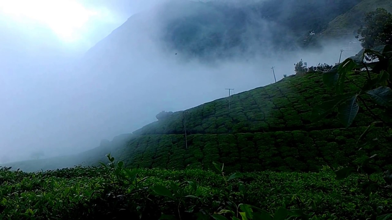munnar temperature falls to one degree