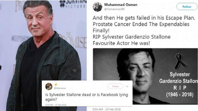 Sylvester Stallone death hoax again floods social media