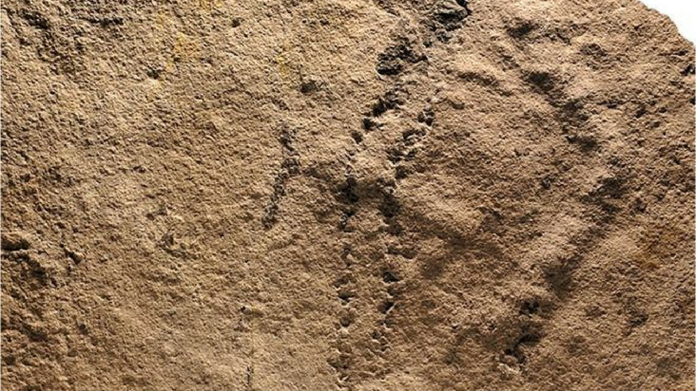 oldest footprint found in china