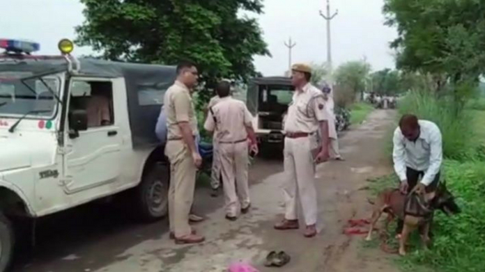 lynching in the name of cow in rajasthan