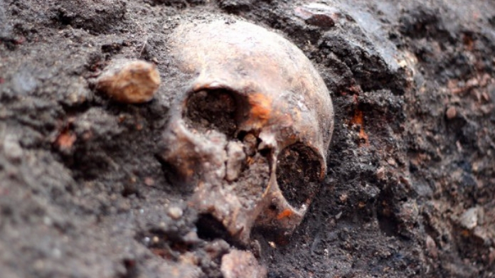 human skull found from perinthalmanna