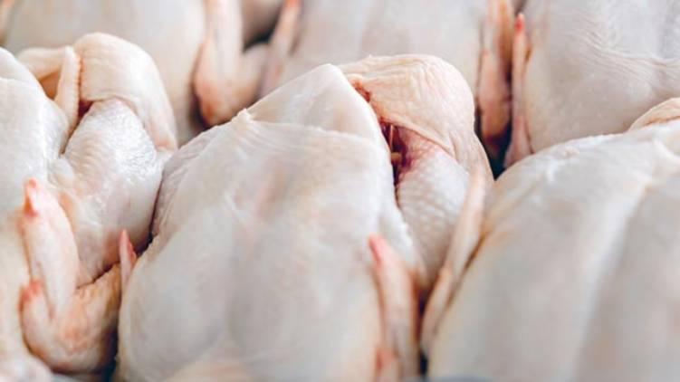 chicken price sky rocket in kerala