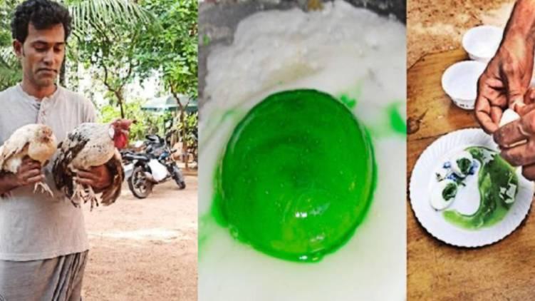 eggs with green yolk
