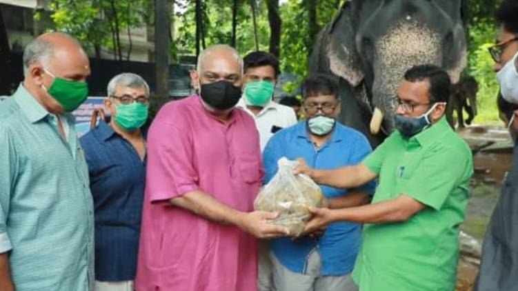 Covid19: project of distributing food to elephants has begun