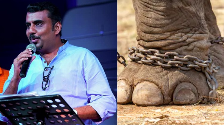 vc abhilash elephant lovers