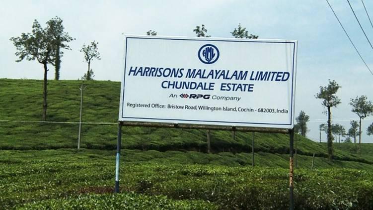 district collectors asked to file case govt land encroachment