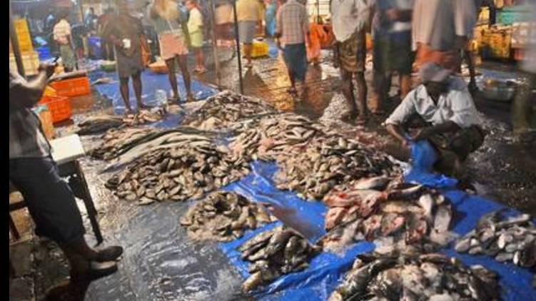 strict regulations in ernakulam market