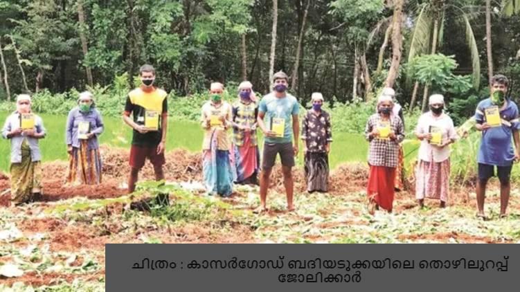 youth enrolls for NREGS work pathanamthitta