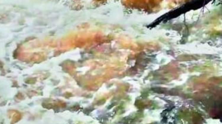 nilabur flood
