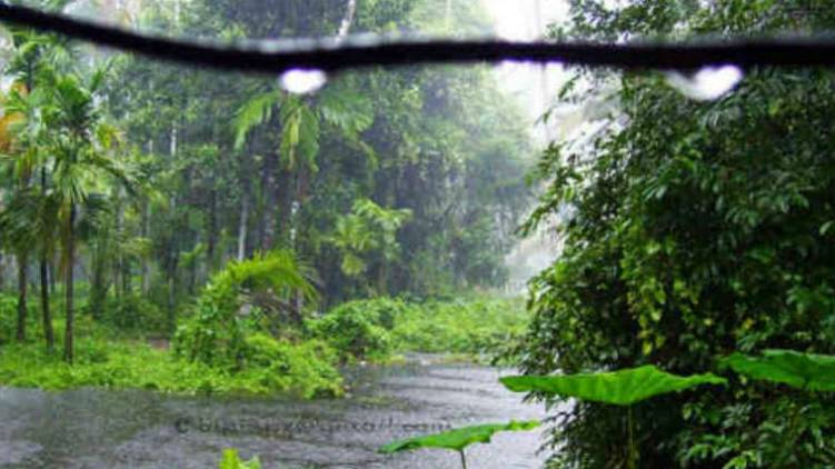 nyul cyclone chances of heavy rain kerala